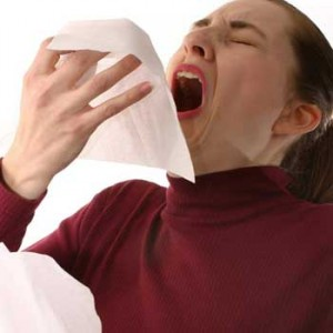sneeze-speedjpg