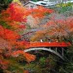 Autumn in Japan: Koyo and Culture