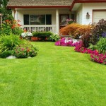 4 Tips for Having a Lawn That Turns Heads