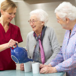 Tips For Caring For Your Elderly Relatives